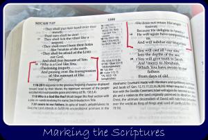 marking scripture