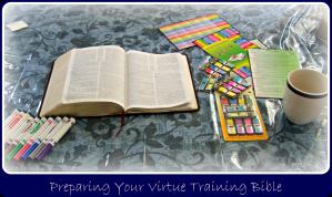 virtue training bible