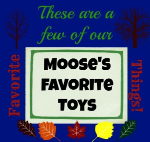 Moose's favorite things (5 year old boy)