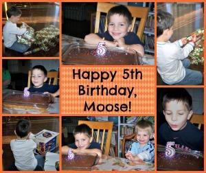 Moose-5th Birthday