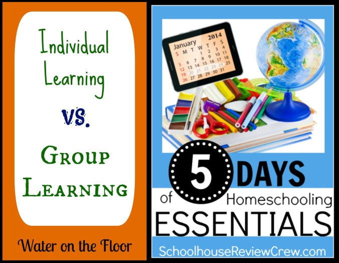 Individual Learning vs. Group Learning
