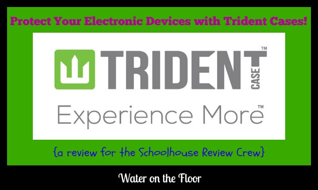 Trident Case review